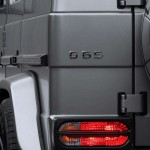 Mercedes-Benz G 65 AMG Mansory by TopCar