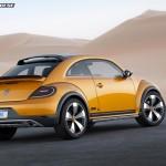 4_dune-beetle14
