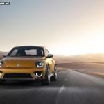 7_dune-beetle14