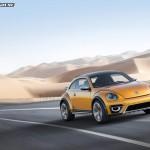 8_dune-beetle14