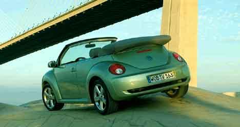 beetle 12906