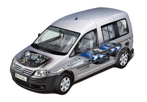 eco fuel caddy